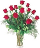 A Bouquet of 11 Long-Stem Roses will make your beloved one to feel very special!!!